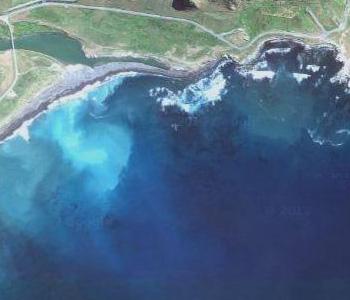 NZ-Surf-Guide_Beach-View_Tora-Stream