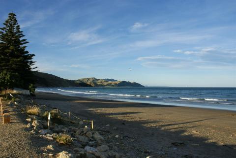 NZ-Surf-Guide-Castlepoint-Beach-West.JPG
