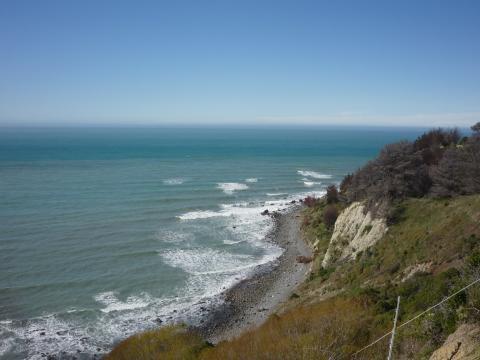NZ-Surf-Guide-Port-Robinson-Point2.JPG