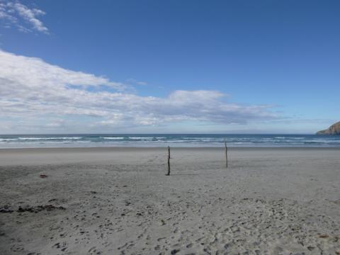 NZ-Surf-Guide_Allans-Beach-Middle.JPG