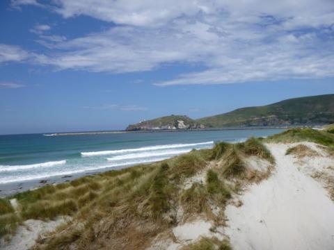 NZ-Surf-Guide_Aramoana-South.JPG