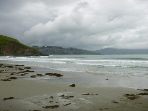 NZ-Surf-Guide_Murdering-Bay-Point-North.JPG