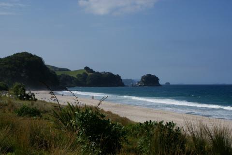 NZ-Surf-Guide_Waihi-North